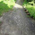 Betonovy chodnik okolo rod domu dsc03930 mini 1