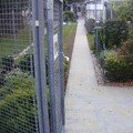 Rekonstrukce dvora a chodniku p9280757