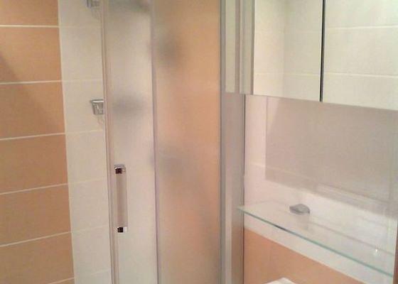 rekonstrukce bytového jádra a kuchyně, malování, pokládka podlahy, instalace vestavěných skříní - garsonka 40m2