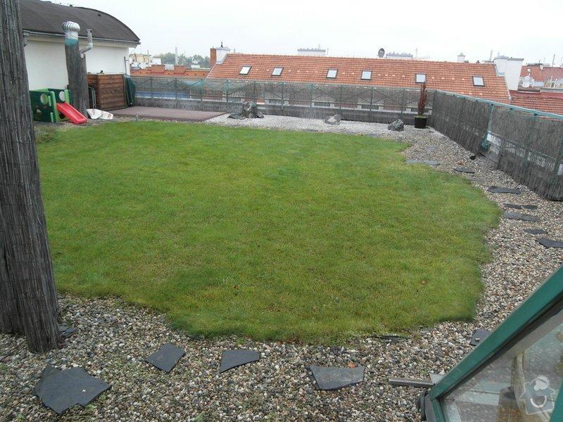 Stresni zahrada cca 150 m2: SAM_9212