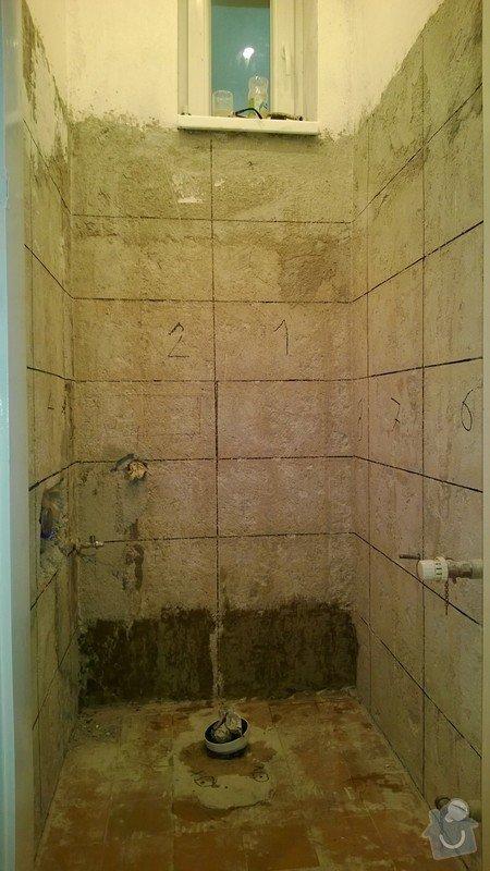 Obklad záchodu 6m2 a 1m2 dlažby: WP_20131116_001