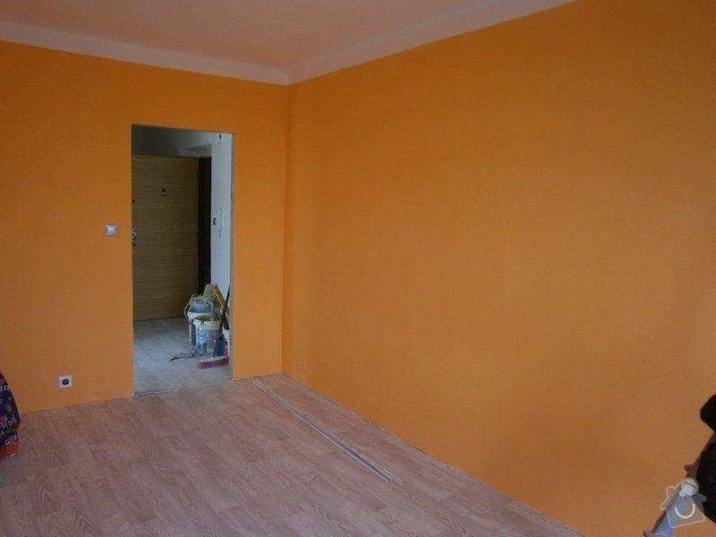 Rekonstrukce bytu: PA130241