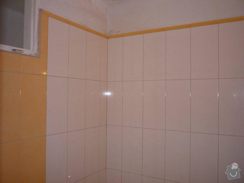 Obklady a dlazby v koupelne+WC: p1060350