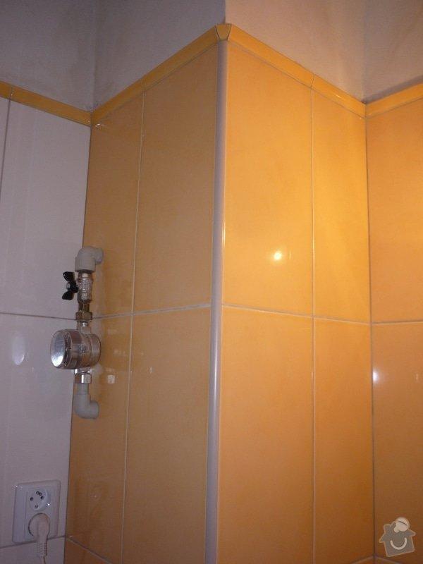 Obklady a dlazby v koupelne+WC: p1060351