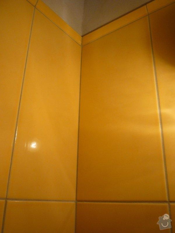Obklady a dlazby v koupelne+WC: p1060352