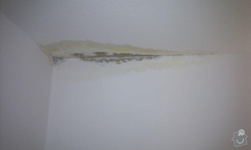 Vymalování po zatečení (2 pokoje): IMAG0244