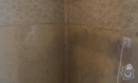Malířské práce (2 místnosti): ceska_035