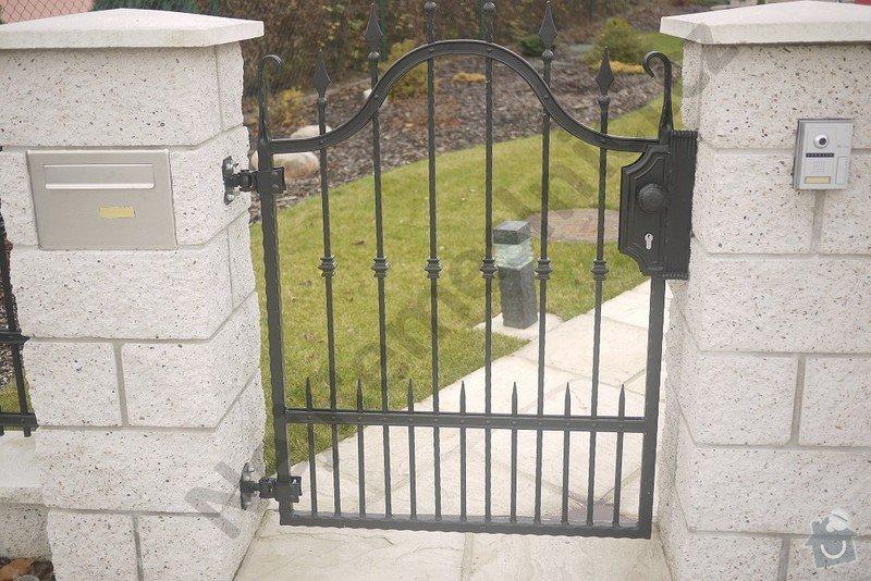 Ozdobný kovaný plot, branka a křídlová brána s pohonem: VN03
