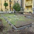 Polozeni travniho koberce a zahradni dlazby zahrada 440 m2 zahrada vnitrobloku ul.ovenecka 1