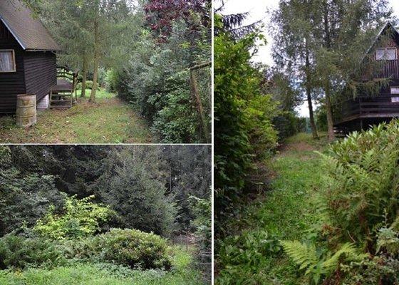 Úprava zanedbané zahrady