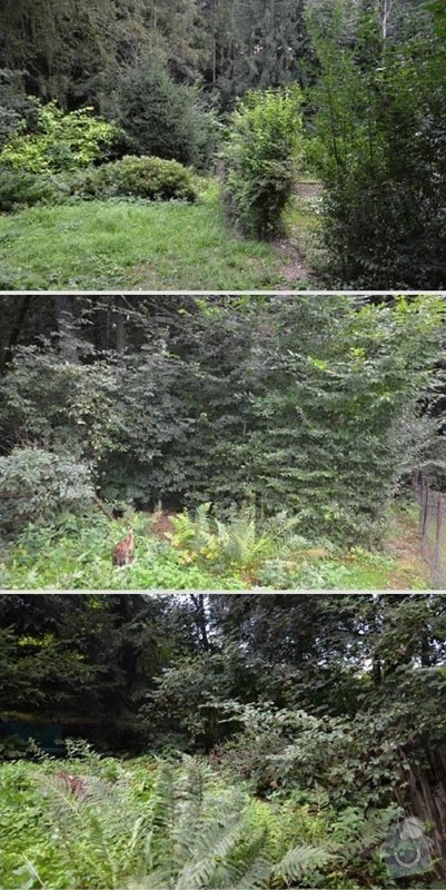 Úprava zanedbané zahrady: 2.Jaroslav_Kysilko_puvodni_stav