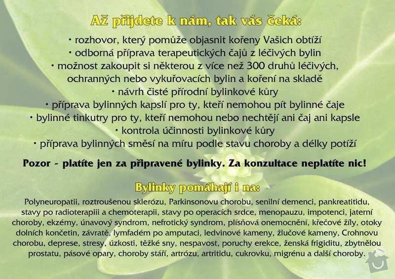 Tisk letáku A5: zdravi_z_bylin_3_kopie