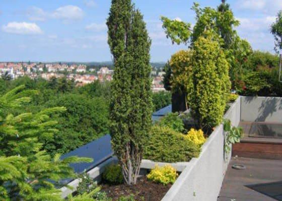 Revitalizace a následná pravidelná péče o střešní zahradu.