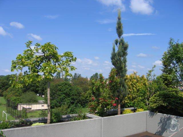 Revitalizace a následná pravidelná péče o střešní zahradu. : IMG_8545