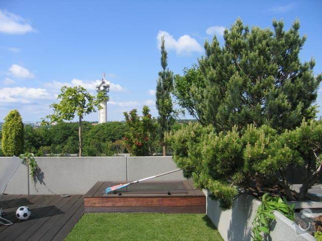 Revitalizace a následná pravidelná péče o střešní zahradu. : IMG_8546