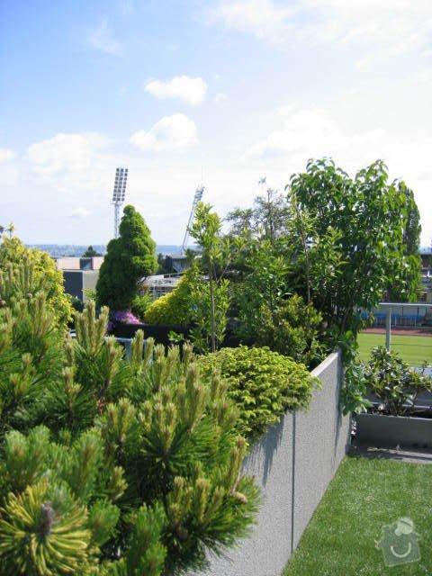 Revitalizace a následná pravidelná péče o střešní zahradu. : IMG_8547
