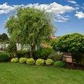 Pravidelna udrzba zahrady upravenadsc 0127