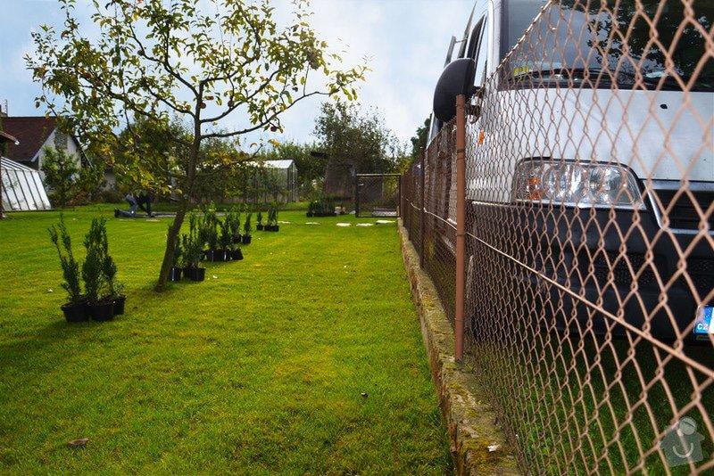Trávník, šlapáková cesta, živý plot: uDSC_0713