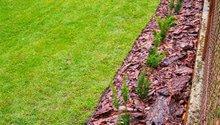 Trávník, šlapáková cesta, živý plot