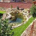 Navrh a realizace zahrady p1010049