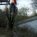 Obnova zahonu na parkovisti obnova provizorniho chodniku prum prumyslove zmlazeni porostu u ulice 5 kvetna u arealu bb cent kaceni trnky 4