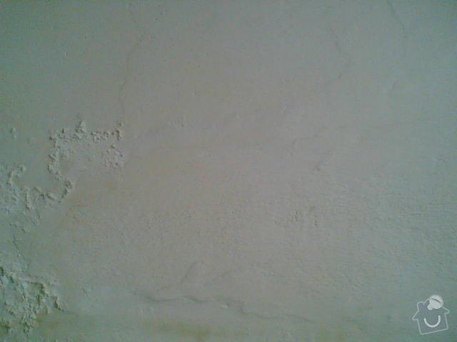 Malířká práce (pokoj a chodba): Vlhkost_Plisne_Mapy_Stekliny_Protekliny_Vytopeni_4_