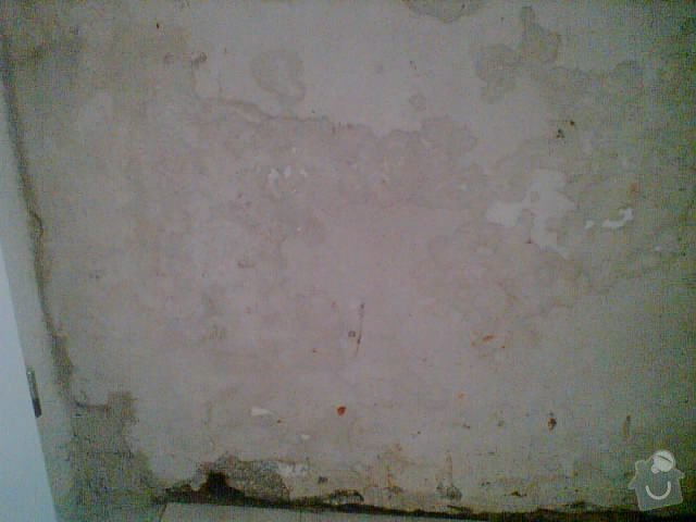 Malířká práce (pokoj a chodba): Vlhkost_Plisne_Mapy_Stekliny_Protekliny_Vytopeni_8_