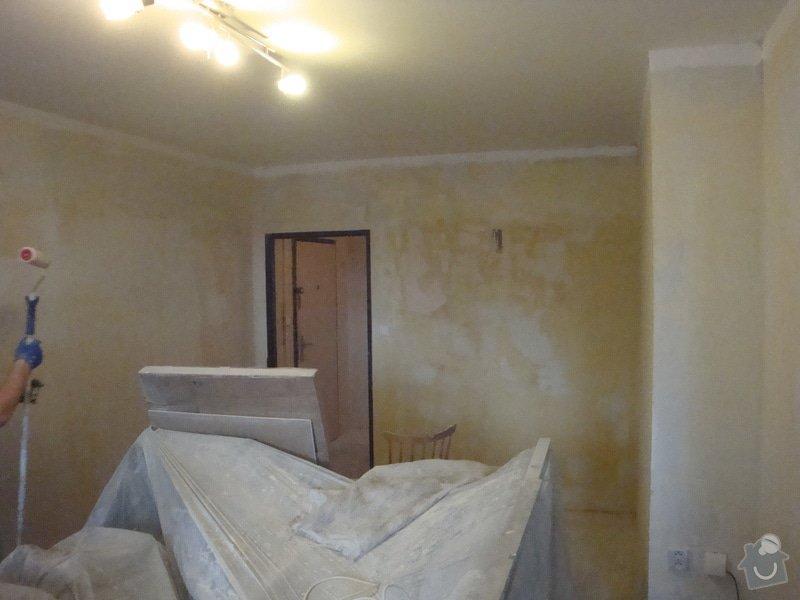 Rekonstrukce bytového jádra, malby: DSC07340