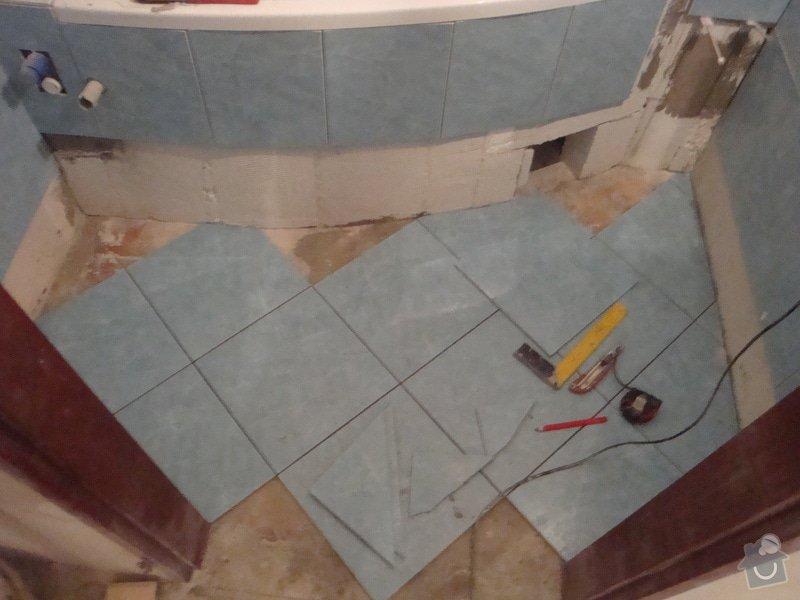 Rekonstrukce bytového jádra, malby: DSC07343