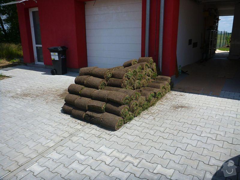 Realizace jednoduché zahrady: P1020604