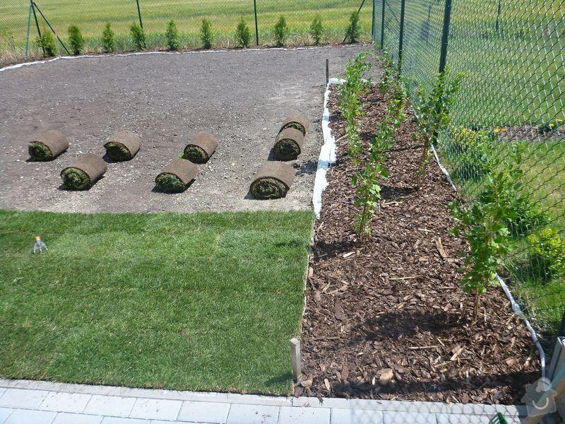 Realizace jednoduché zahrady: P1020605