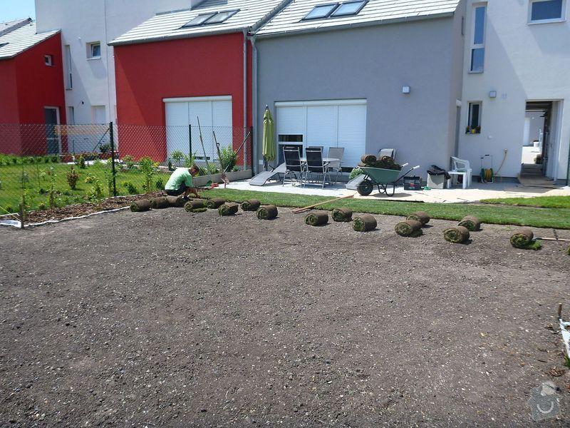 Realizace jednoduché zahrady: P1020606