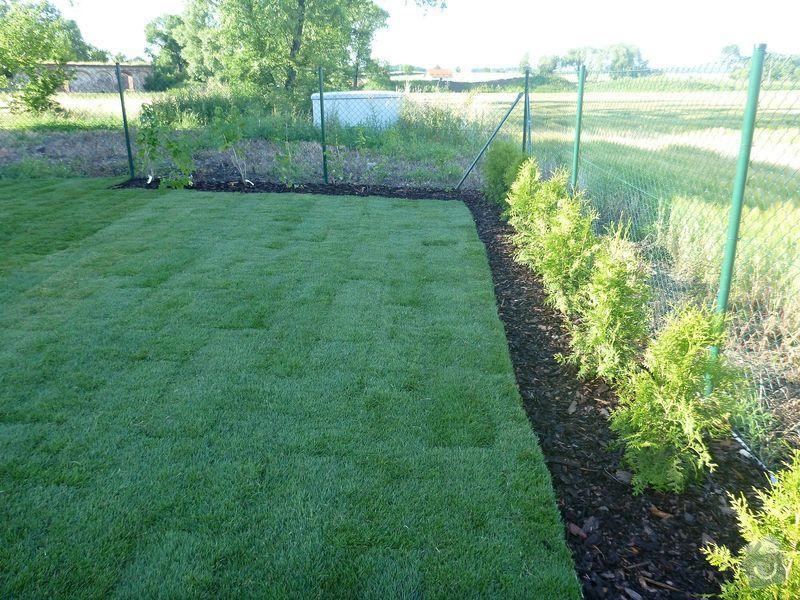 Realizace jednoduché zahrady: P1020611