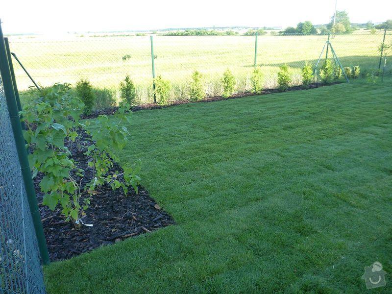Realizace jednoduché zahrady: P1020612