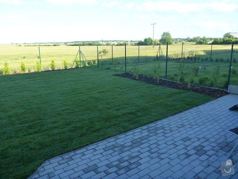 Realizace jednoduché zahrady: P1020607