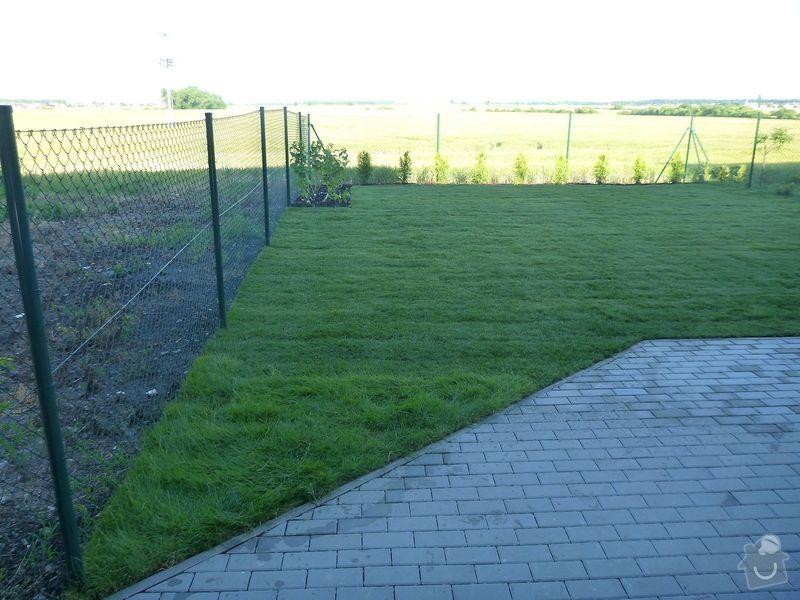 Realizace jednoduché zahrady: P1020608