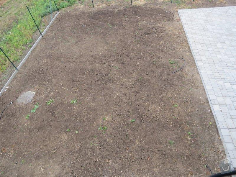 Založení trávníku 320m2 (výsev nebo pokládka koberce): IMG_1741