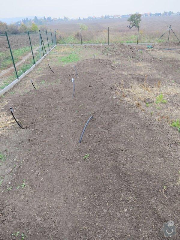 Založení trávníku 320m2 (výsev nebo pokládka koberce): IMG_1771