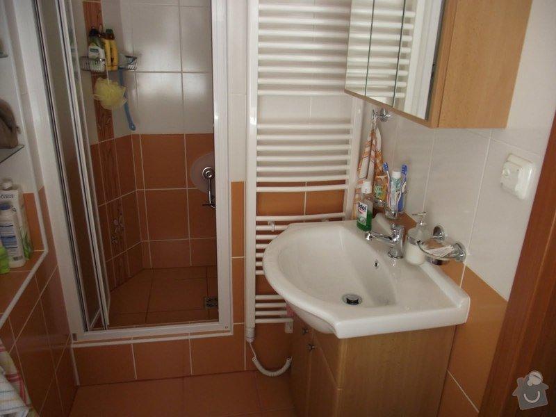 Udrzba dvou cihlovych domu s najemnimi byty: DSCF3805