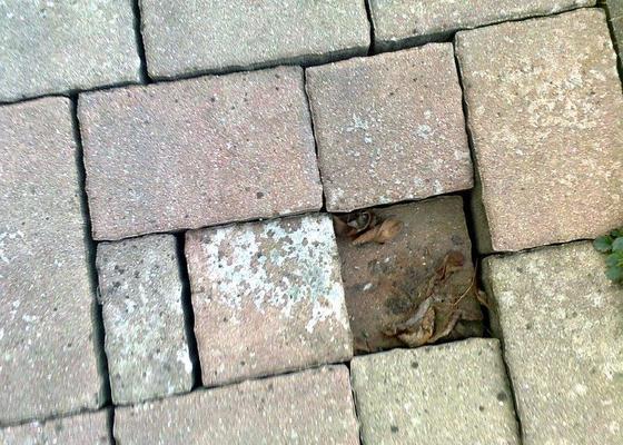 Opravu místy propadlé zámkové dlažby