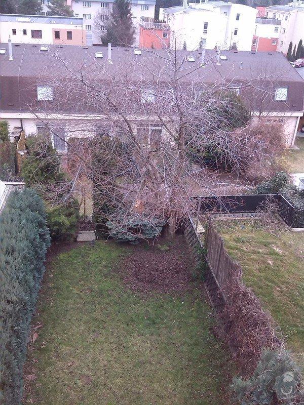 Prořezání stromu: IMG_20140216_102022