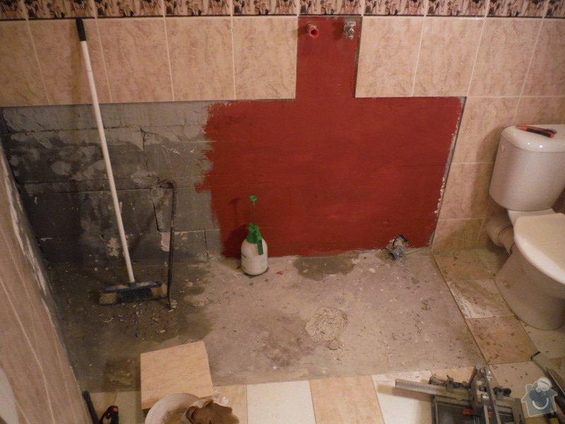 Menší rekonstrukce koupelny: DSCF0242