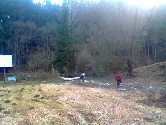 Pokácení vzrostlé břízy u chaty: Fotografie1406