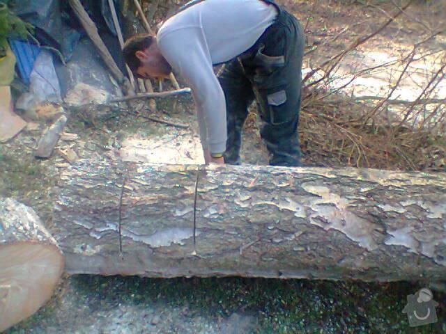 Pokácení vzrostlé břízy u chaty: Fotografie1409