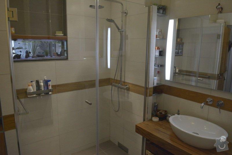 Rekonstrukce koupelny: DSC_2316