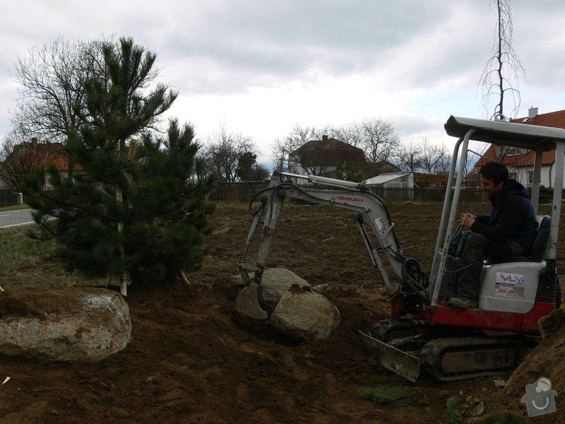 Zakladaní zahrady, vysadba vzrostlych stromu: P1490319