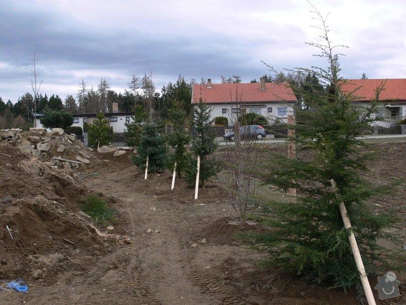 Zakladaní zahrady, vysadba vzrostlych stromu: P1490357