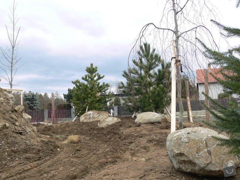Zakladaní zahrady, vysadba vzrostlych stromu: P1490370