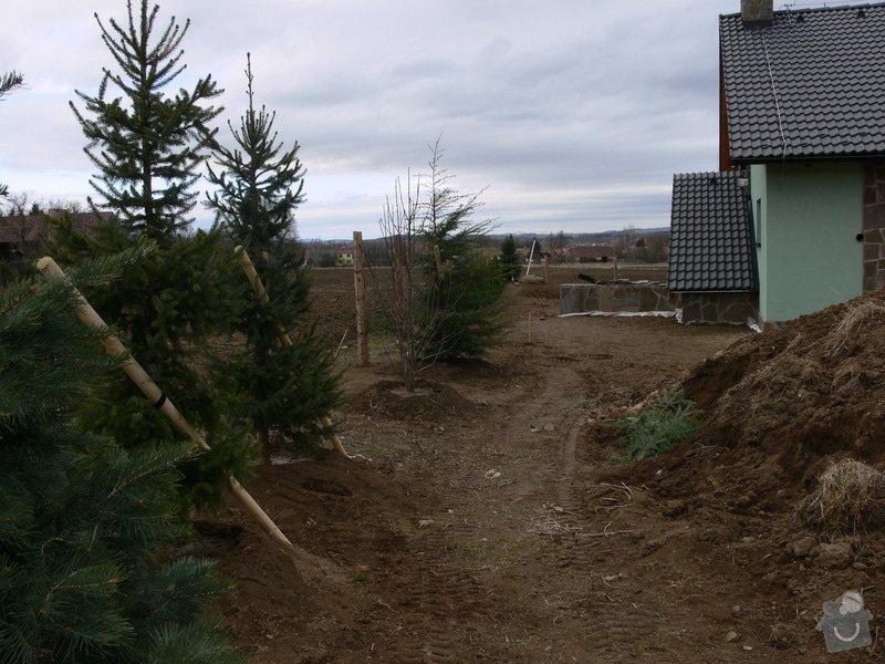 Zakladaní zahrady, vysadba vzrostlych stromu: P1490329