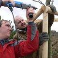 Zakladani zahrady vysadba vzrostlych stromu p1490339